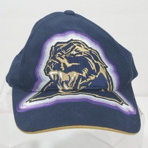 Rare Pittsburgh Panthers Embroidered baseball hat
